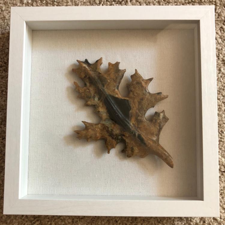 soapstone maple leaf